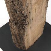 L'anima del legno Riva 1920